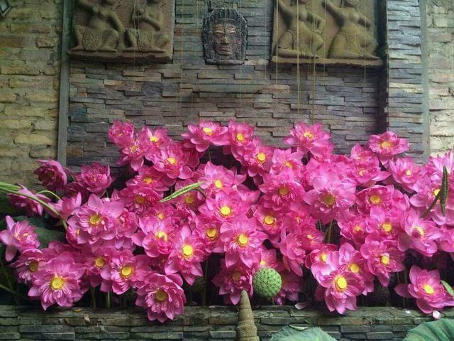 باغ گل غول پیکر در تراس خانمی از هانوی - تصویر 14.