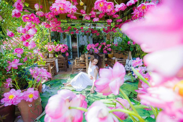 باغ گل غول پیکر در تراس خانمی از هانوی - تصویر 3.