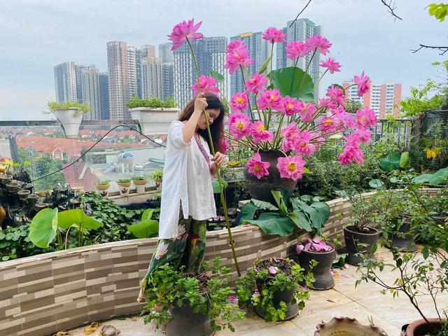 باغ گل غول پیکر در تراس خانمی از هانوی - تصویر 4.