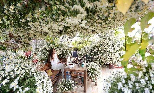 باغ گل غول پیکر در تراس خانمی از هانوی - تصویر 7.