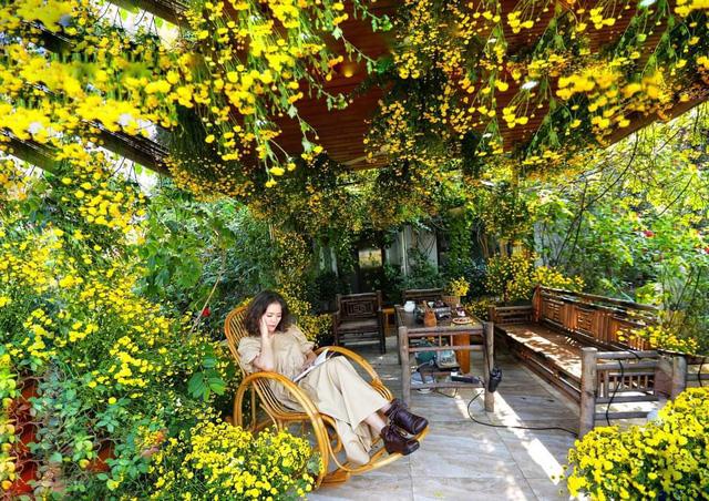باغ گل غول پیکر در تراس خانمی از هانوی - تصویر 10.