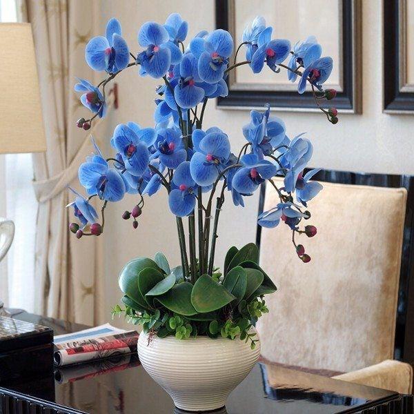 Bí quyết trang trí văn phòng làm việc bằng hoa tươi cực hay - Ảnh 6.