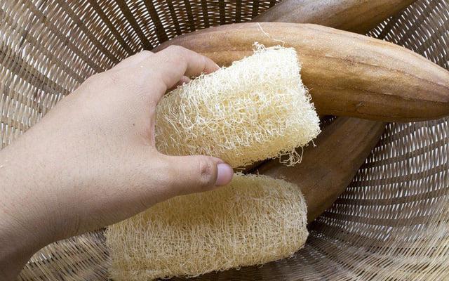 Kinh ngạc thứ hay dùng để rửa bát lại là vị thuốc cần thiết cho rất nhiều người - Ảnh 3.