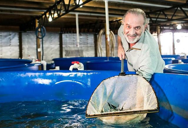 Bí mật nơi nông dân nuôi cá làm ra đặc sản thượng hạng hàng trăm triệu/kg - Ảnh 2.