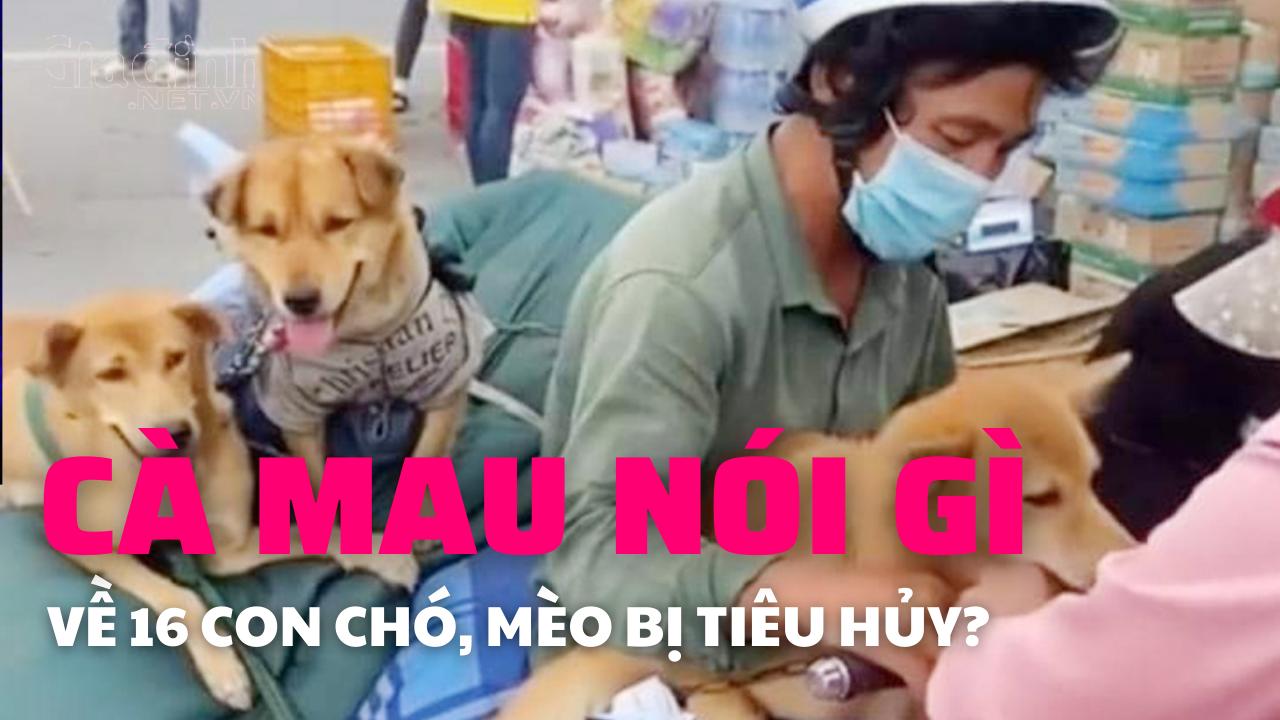 Cà Mau nói gì về vụ tiêu hủy 16 con chó, mèo của người dân?