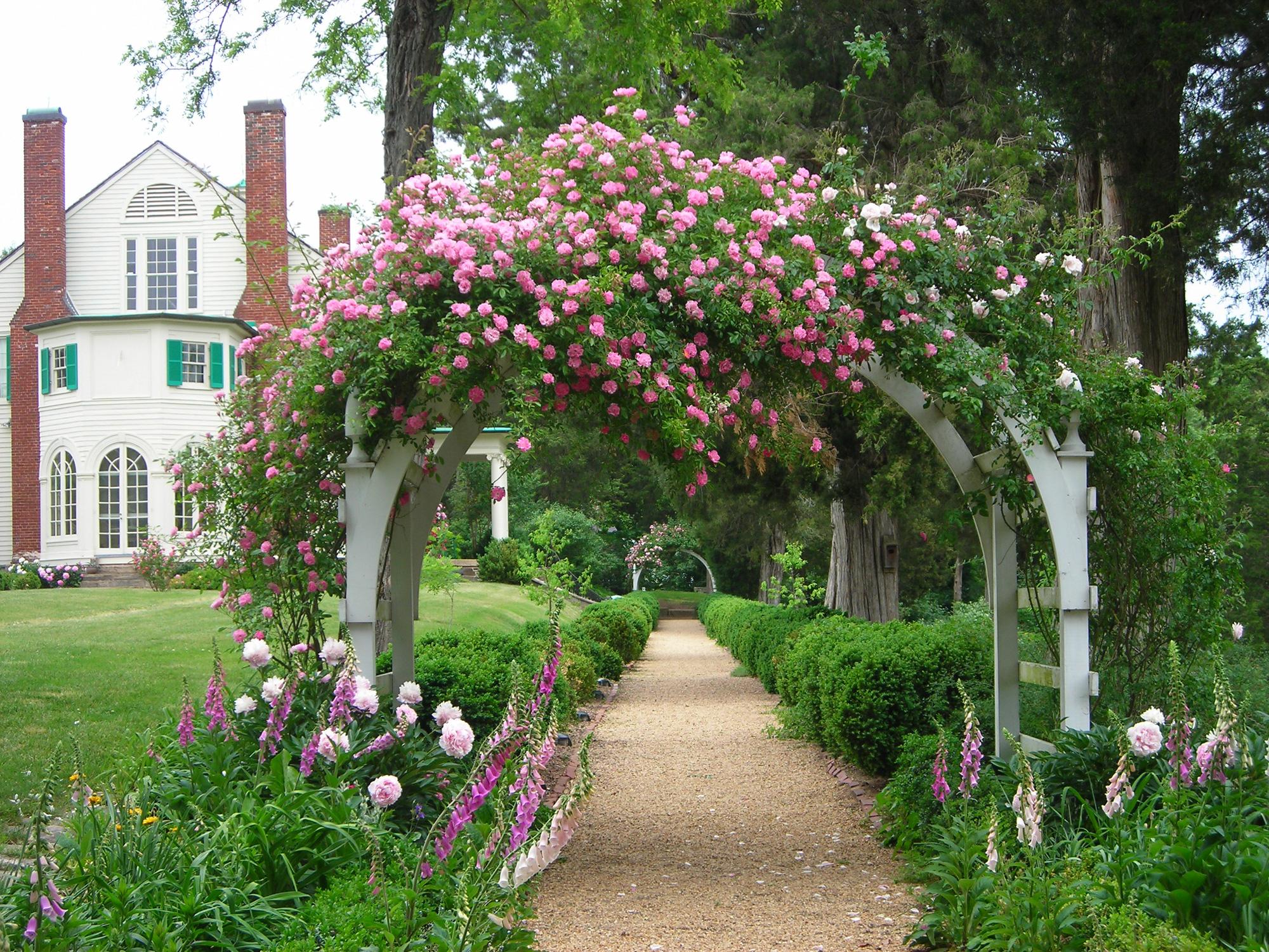 """Những cổng nhà có hoa hồng leo lãng mạn đẹp đến """"lịm tim"""" - Ảnh 4."""