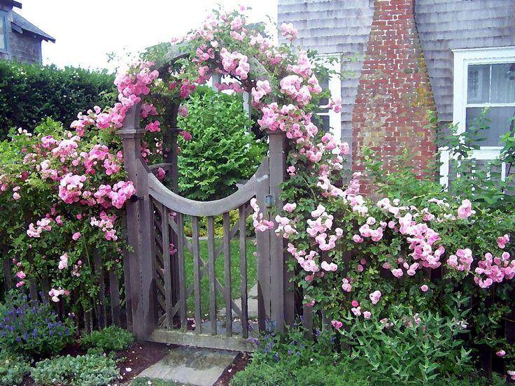 """Những cổng nhà có hoa hồng leo lãng mạn đẹp đến """"lịm tim"""" - Ảnh 3."""