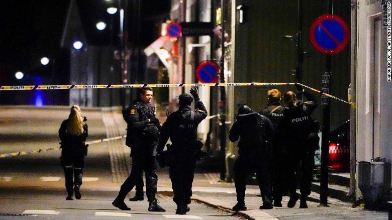 Na Uy: Rúng động vì 5 người bị bắn chết bằng cung tên - Ảnh 2.