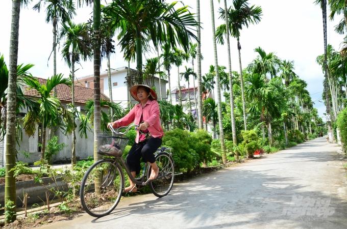 Loại cây ở Việt Nam ăn một nắm muối, trả một phân vàng - Ảnh 3.