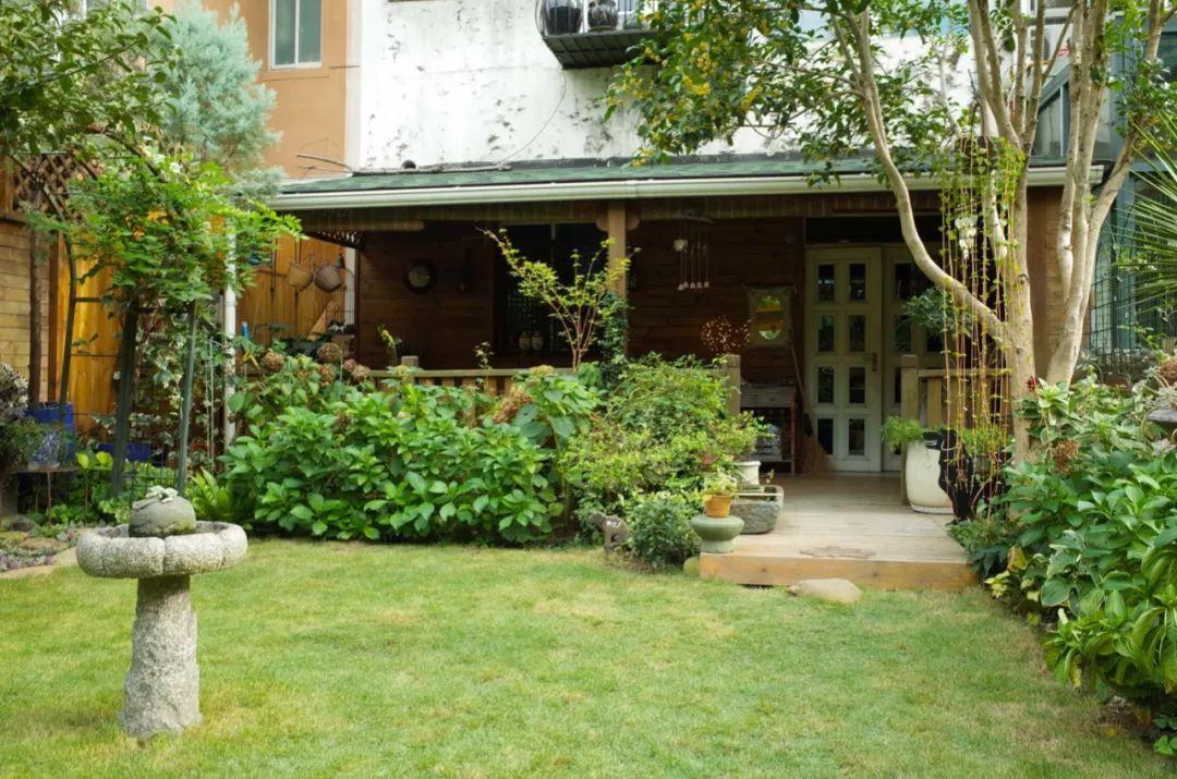 Tất bật nhiều năm tuổi trẻ, người phụ nữ tuổi 40 dành dụm tiền mua căn nhà vườn xinh xắn sống cuộc đời an yên - Ảnh 12.