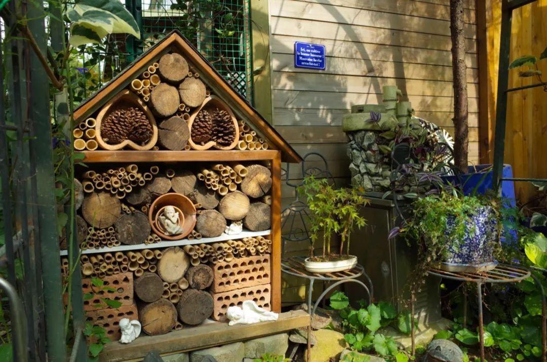 Tất bật nhiều năm tuổi trẻ, người phụ nữ tuổi 40 dành dụm tiền mua căn nhà vườn xinh xắn sống cuộc đời an yên - Ảnh 18.