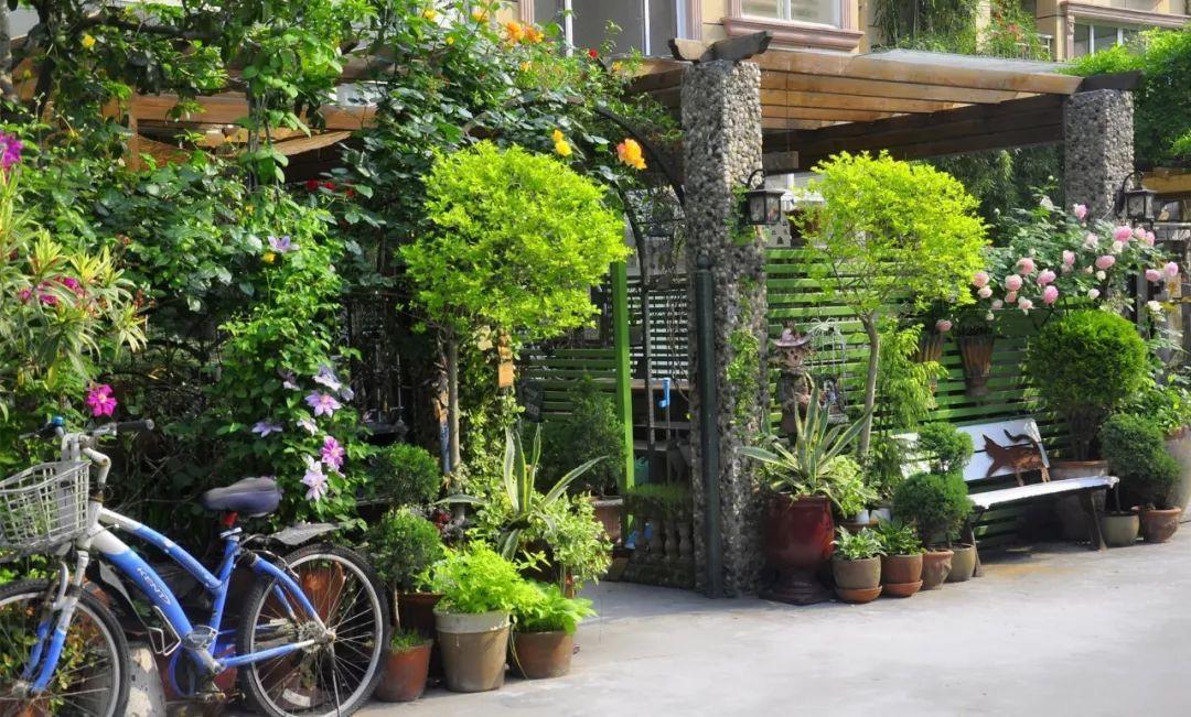 Tất bật nhiều năm tuổi trẻ, người phụ nữ tuổi 40 dành dụm tiền mua căn nhà vườn xinh xắn sống cuộc đời an yên - Ảnh 2.