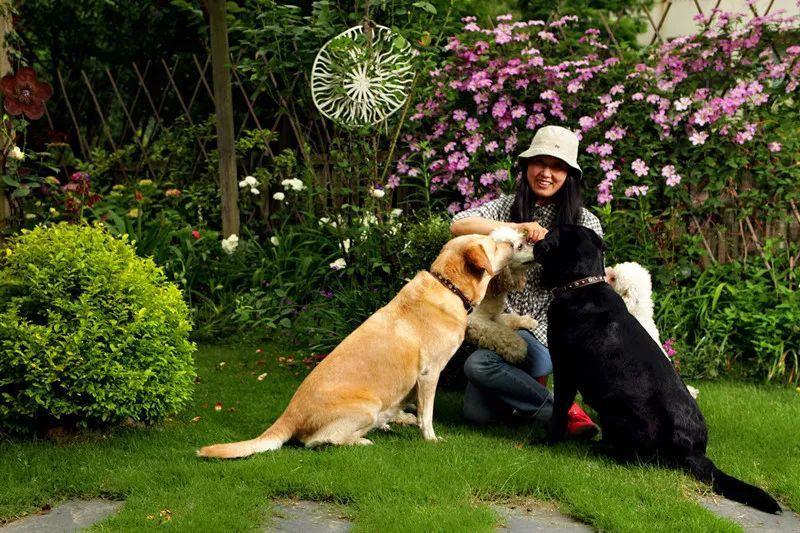 Tất bật nhiều năm tuổi trẻ, người phụ nữ tuổi 40 dành dụm tiền mua căn nhà vườn xinh xắn sống cuộc đời an yên - Ảnh 5.