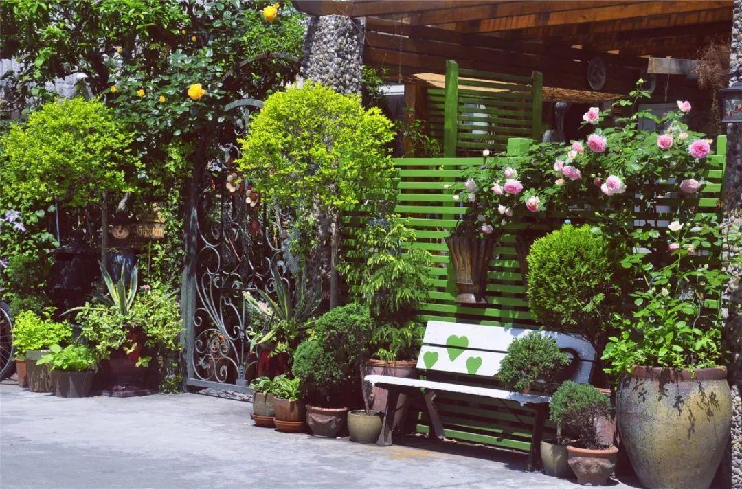 Tất bật nhiều năm tuổi trẻ, người phụ nữ tuổi 40 dành dụm tiền mua căn nhà vườn xinh xắn sống cuộc đời an yên - Ảnh 1.