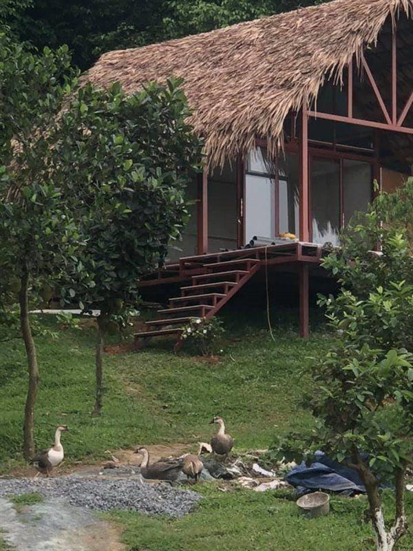 Cơ ngơi đẹp lạ lùng tại khu nhà nghỉ dưỡng của ca sĩ Việt Hoàn - Ảnh 6.