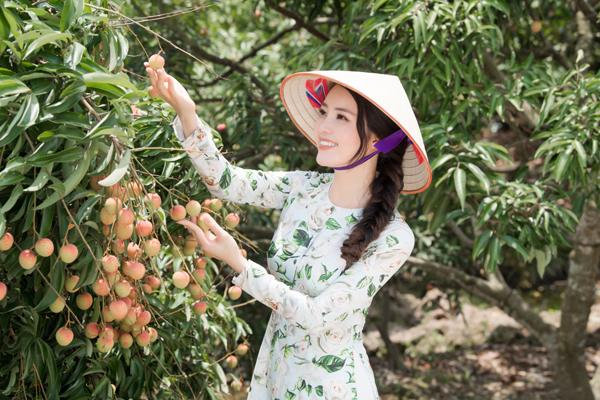 MC, Á hậu Thuỵ Vân được bà con nông dân Hải Dương trao danh hiệu đại sứ vải Thanh Hà - Ảnh 2.