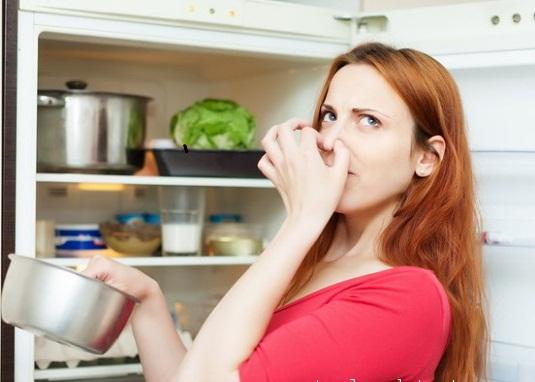 Mẹo khử mùi tủ lạnh cực đơn giản mà hiệu quả không cần đến hóa chất - Ảnh 2.