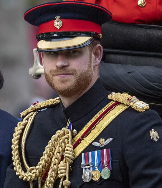 Hoàng tử Harry nhận trả lời Oprah sau khi bị tước các vai trò quân đội - Ảnh 2.