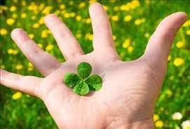 8 công thức giúp bạn thu hút may mắn trong đời - Ảnh 3.