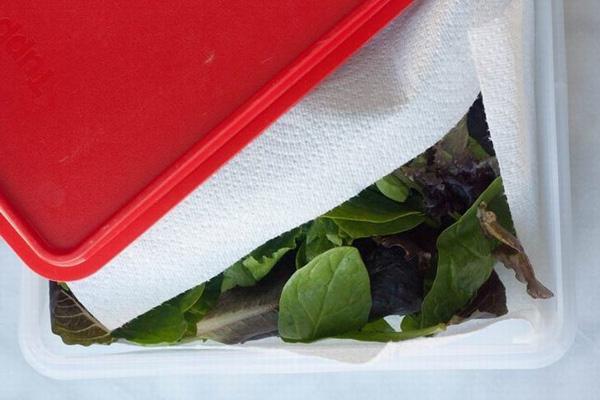 Trữ lạnh thịt - rau mùa giãn cách: Ghim ngay những bí quyết này nếu không muốn rau héo rũ còn thịt mất hết chất - Ảnh 3.