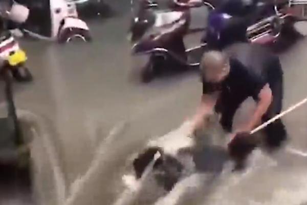 Cảnh tượng mưa lũ hàng nghìn năm có một ở Trung Quốc: Khiếp sợ cảnh cô gái đang đi đường bị cuốn lũ trôi, cảnh sát ra sức cứu - Ảnh 2.