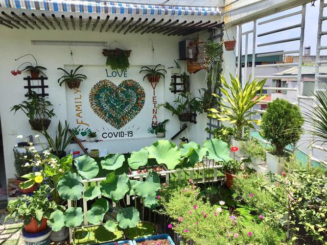Cách thiết kế vườn rau sân thượng mùa dịch vừa đơn giản lại đẹp mắt - Ảnh 1.