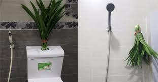 Khủng hoảng vì mùi nhà vệ sinh trong những ngày ở nhà liên tục vì giãn cách, hãy lập tức dùng 1 trong 5 cách dưới đây - Ảnh 4.