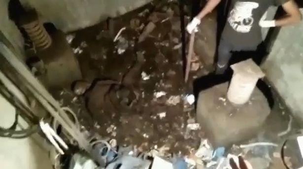 Kiểm tra thang máy bị bỏ quên suốt hơn 20 năm, kĩ sư hét lên sợ hãi khi thấy thứ bên trong - Ảnh 3.