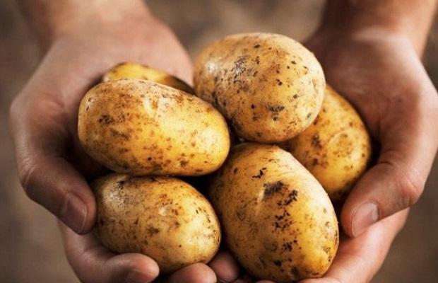 Khoai tây sẽ cực tốt nếu bạn tránh được 4 sai lầm phổ biến này - Ảnh 6.