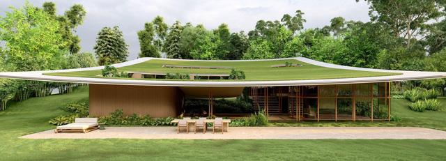 Ngôi nhà 'tàng hình' nhờ dùng thảm cỏ làm mái - Ảnh 1.
