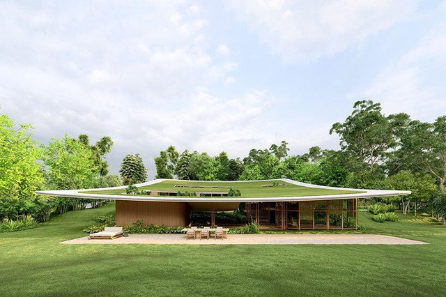 Ngôi nhà 'tàng hình' nhờ dùng thảm cỏ làm mái - Ảnh 8.