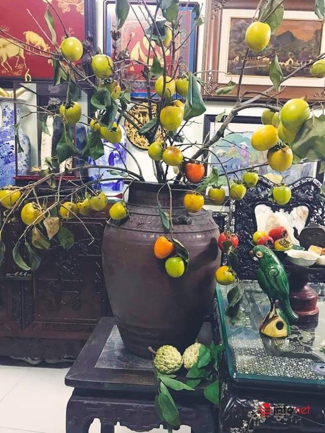 Thú chơi lạ ngày dịch của dân Hà thành: Bỏ tiền mua nguyên cành cây mọc ở miền núi về cắm, chín thì ăn hoặc ngâm rượu - Ảnh 7.