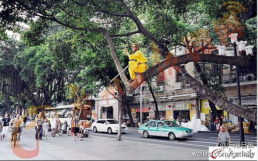 Tận mắt chứng kiến Tôn Ngộ Không đại náo trên phố Trung Quốc 4