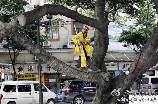 Tận mắt chứng kiến Tôn Ngộ Không đại náo trên phố Trung Quốc 2