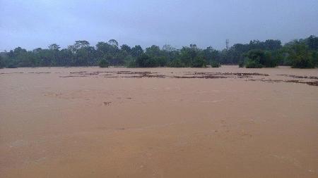 Nước lũ bao trùm tại nhiều địa phương tỉnh Hà Tĩnh 3