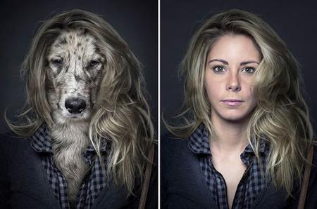 Chó trưng diện giống chủ nhân chụp ảnh chân dung 1