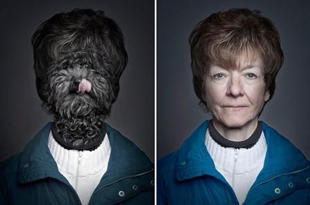 Chó trưng diện giống chủ nhân chụp ảnh chân dung 2