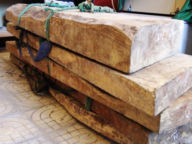 Xét xử vụ gỗ sưa trăm tỷ 1