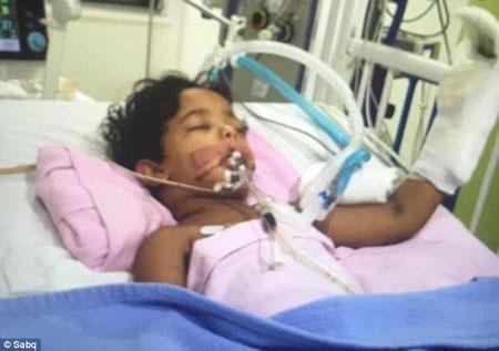 Cậu bé 3 tuổi may mắn sống sót và đang được điều trị tích cực trong bệnh viện.