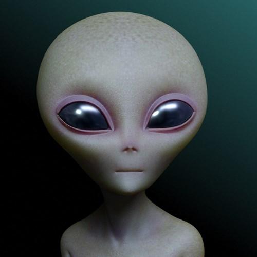 Tuy nhiên, nếu người ngoài hành tinh thực sự tồn tại và có diễn ra hoạt động giao phối thì điều đó cũng không đồng nghĩa với việc những suy luận về cách họ quan hệ tình dục diễn ra đúng như những gì các chuyên gia nhận định.