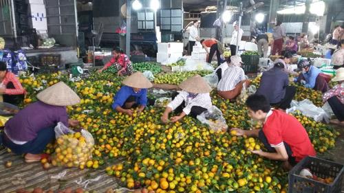 Phần lớn khách mua chủ yếu là những người bán lẻ rong tại nhiều tuyến phố của Hà Nội. Ảnh:Trịnh Nguyên