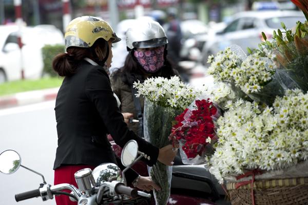 Rất nhiều người thích mua loại hoa này vì giá khá rẻ.