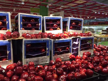 """Những quả táo căng mọng, chín đỏ có """"tuổi thọ"""" đã hơn 100 ngày"""