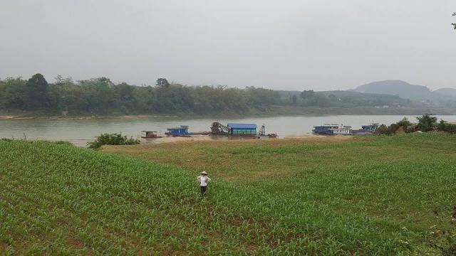 Theo nhẩm tính của người dân thôn Gò Hu, 1/5 diện tích đất canh tác ven sông Lô đã bị các tàu hút cát làm sạt lở. Ảnh Cao Tuân