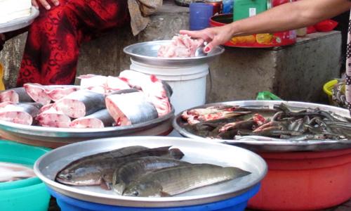 Cá nước ngọt tăng giá từ 5.000 đến 10.000 đồng một kg. Ảnh: Hồng Châu.