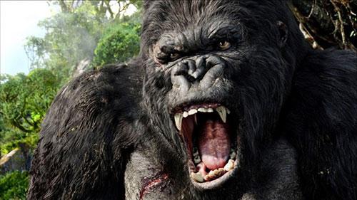 Kong: Skull Island sẽ quay tại một số địa điểm trong đó có Việt Nam.
