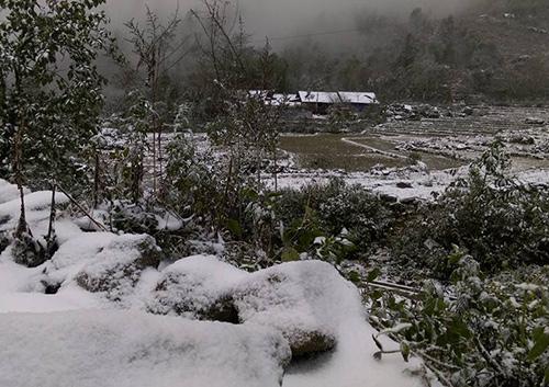 Mái nhà, mặt đất ở xã Y Tý (Bát Xát, Lào Cai), nơi có độcao 2.000 m so với mực nước biển trắng xóa bởi tuyết.Ảnh:Hoàng Phương.