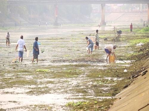 Người dân Thái Lan vớt cá chết trên sông Nam Wang. Nguồn: TL