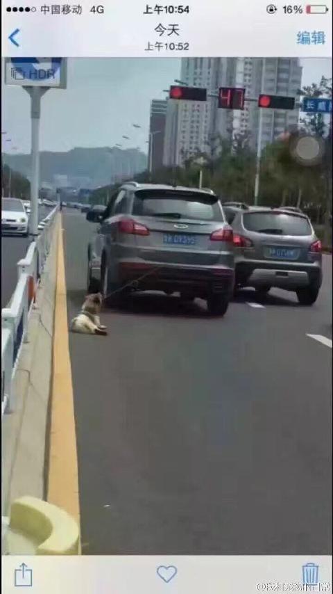 Người dân Trung Quốc đang vô cùng phẫn nộ vì hành vi mất nhân tính của tài xế.