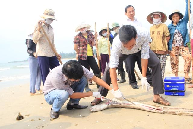 Chuyên gia lấy mẫu cá chết để phân tích. Ảnh: Dân trí
